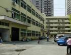 沈海高速出口一楼1200平米带现成厂车厂房出租