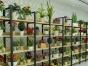 中岛柜手机展示柜红酒展示柜干粮货架仓组货架超市货架