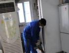 汕头卫士白蚁专业灭老鼠、灭白蚁、灭臭虫、灭蟑螂、灭