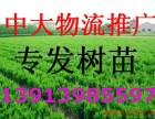 南京到青岛烟台日照临沂聊城威海莱芜物流专线