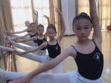 顺义高标准的少儿舞蹈培训机构