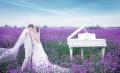 80印象高端婚纱摄影女人节全城活动价值9999仅售3999元