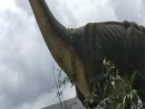 厦门专业提供侏罗纪仿真恐龙模型出租