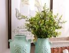 我家花屋出售中高档仿真花、花瓶