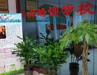 重庆成人钢琴培训班在哪里报名欢迎来电订购