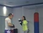 专业现代武术套路,散打等强身健体培训,就在哼哈体育