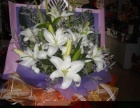 前锋区鲜花实体店情人节鲜花预订同城免费送