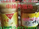 江西吉安天龙山纯天然土蜂蜜