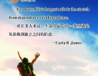 杭州桔欧教育