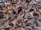 漳州大量回收钢铁废旧二手金属