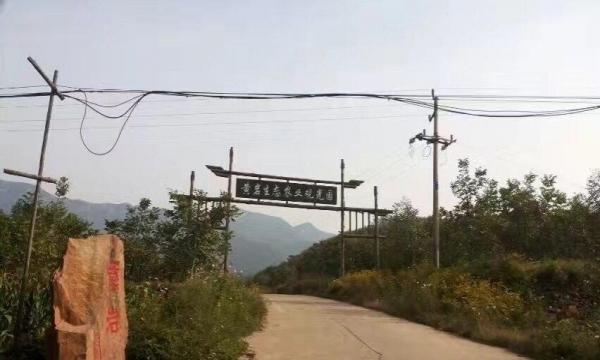 河北省级生态农业观光采摘书贵采摘园
