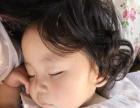 9个月韩版萌宝模特 婴儿模特淘宝模特