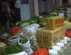 专业蔬菜配送食堂承包