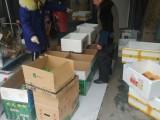 郑州预定无公害蔬菜集装箱