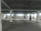 康桥工业园三楼标准仓库1100平出租