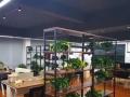 金东金帆街电商园 写字楼 200平米