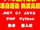 JAVA培训青岛PHP培训,PYTHON培训,安卓培训