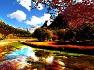 阿吉泰旅游网.稻城亚丁水清峰茂 物种丰富