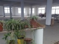 新丰镇600平米厂房出租