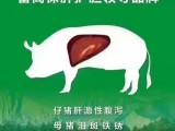 秋季饲养多关注仔猪营养性腹泻