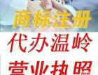 温岭办理 淘宝企业店铺 企业店公司营业执照