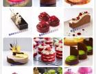 宁波西点培训 面包培训 蛋糕培训 烘焙培训 酷德法式甜品培训