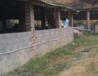 龙门滩镇100亩农场出租 交通方便现有住房