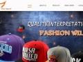 专业网站建设 网页设计 网站推广 十年丰富经验