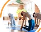健身瑜伽会员卡管理系统诚招全国代理免费OEM