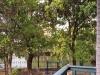 嘉兴-南溪花园3室2厅-1600元