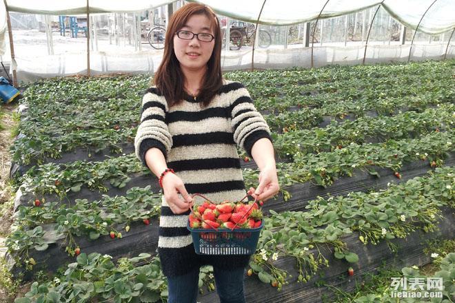 上海长兴岛桔园植树活动开始预定啦