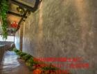 武汉墙面手绘施工 墙面艺术作画效果