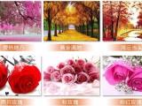北京盛泰恒泽钻石画充分满足消费者的个性化需求