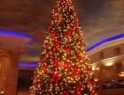 全國承接高端大氣圣誕樹租賃高品質圣誕樹展覽出售
