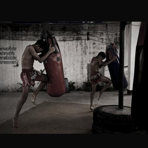 出拳击的正确方式 合肥长丰县图龙会体育告诉你期待您的了解