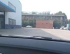 经济开发区标准 正规钢构厂房 仓库1300平米