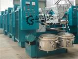 花生菜籽榨油机 全自动螺杆榨油机 榨油房炸油机 大豆炸油机