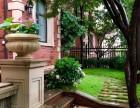 长沙雨林缸 鱼缸 水草缸 风水植物墙花园庭院找 植来植趣
