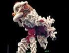 梅花桩舞狮舞龙视频秀 龙鼓 荧光狮荧光龙 激光秀