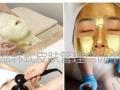 塘沽滨海新区学化妆盘头美甲美睫美容摄影半永久纹绣皮肤管理培训