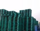 专供应与回收各种二手塑料托盘卡板(地台板)和木卡板