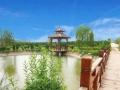 洛阳墓地哪家较便宜?九皇仙府陵园新模式助跑行业头名