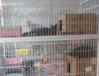 出售1.25米三层猫笼500元