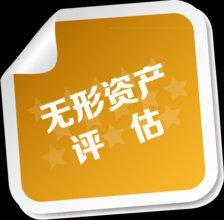 无形资产评估(专利评估 专有技术评估 商标评估 版权评估)