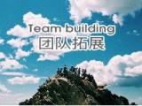 选对伙伴,这些上海拓展团建公司产品让你高效作业