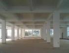金河 全新厂房 750平米