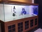上海卖鱼缸卖水族箱卖锦鲤鱼卖观赏鱼卖龙鱼卖发财鱼卖冷水鱼