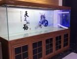 鱼缸 水族箱 观赏鱼 专卖