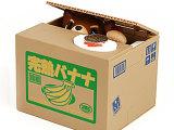 正品日本超萌偷钱猫狗吃钱猫狗贪财猫狗存钱罐储蓄罐白猫宠物猫狗