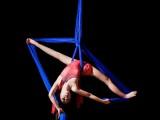 龙泉钢管舞爵士舞培训吊环绸缎空中伞舞酒吧领舞
